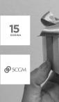 pokon kutijica sa trakom (srebrna) / SCGM
