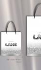 Tri modela specijalnih kesa sa ručkama od satenske trake / Zlatara Lane
