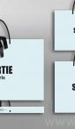 Reklamne luksuzne kese (tri modela, idejno rešenje) / Sortie