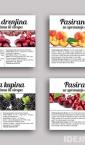 Samolepljive etikete, nalepnice za pasirano voće / Vilapromet