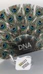 DNA communication (Dinasty) / reklamna lepeza