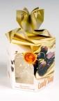 Šestougaona kutija (2) / Candy Shop (Crna Gora)
