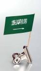 zastavice na čačkalici - saudijska-arabija