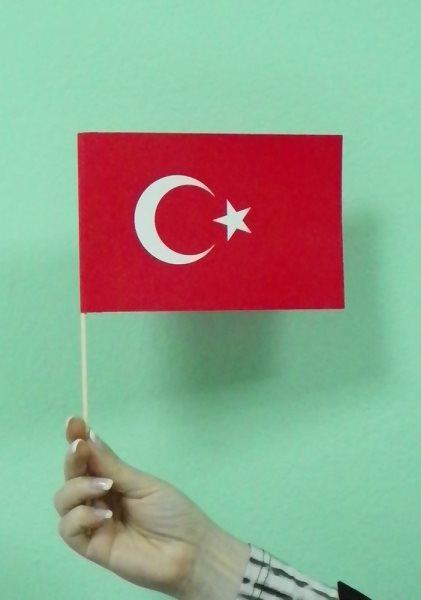 zastavice od papira - Turska