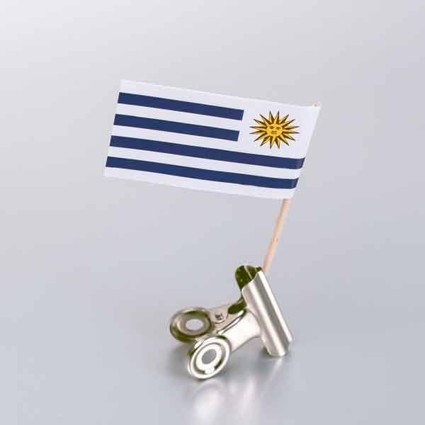 zastavica na čačkalici - urugvaj