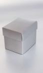 Petodelna kutija za sat 1